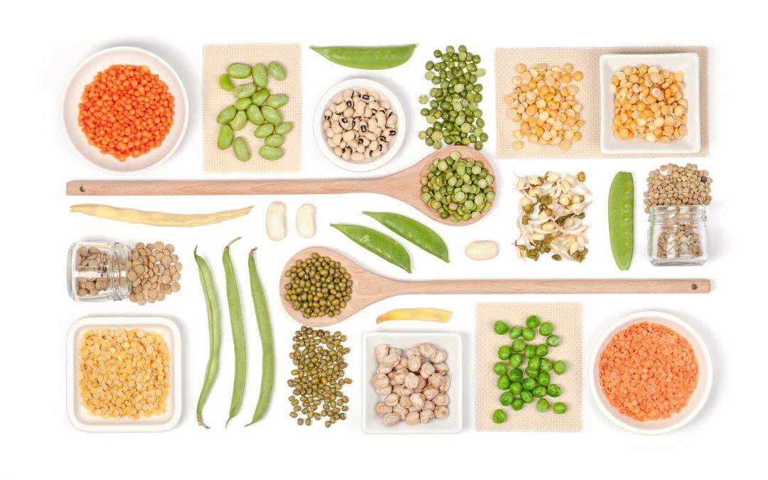 Plant Based Life Diet